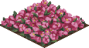 F flowerbed 1 0.png